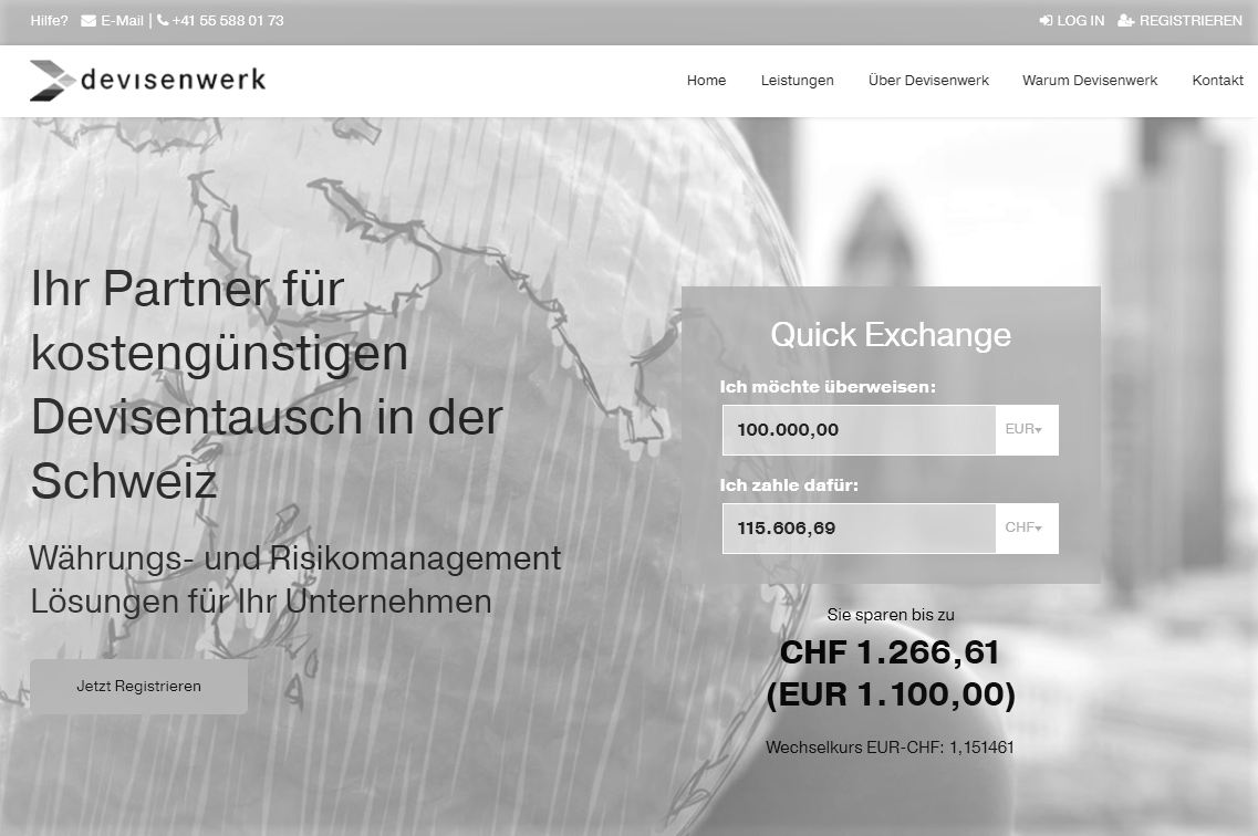 Screen Devisenwerk v2 - Million Franken Baby: Devisenwerk.ch startet durch